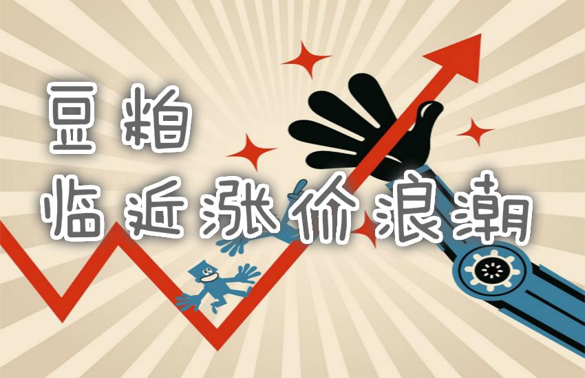 图片[1]-图灵波浪——豆粕临近涨价浪潮-图灵波浪理论官网-图灵波浪交易系统